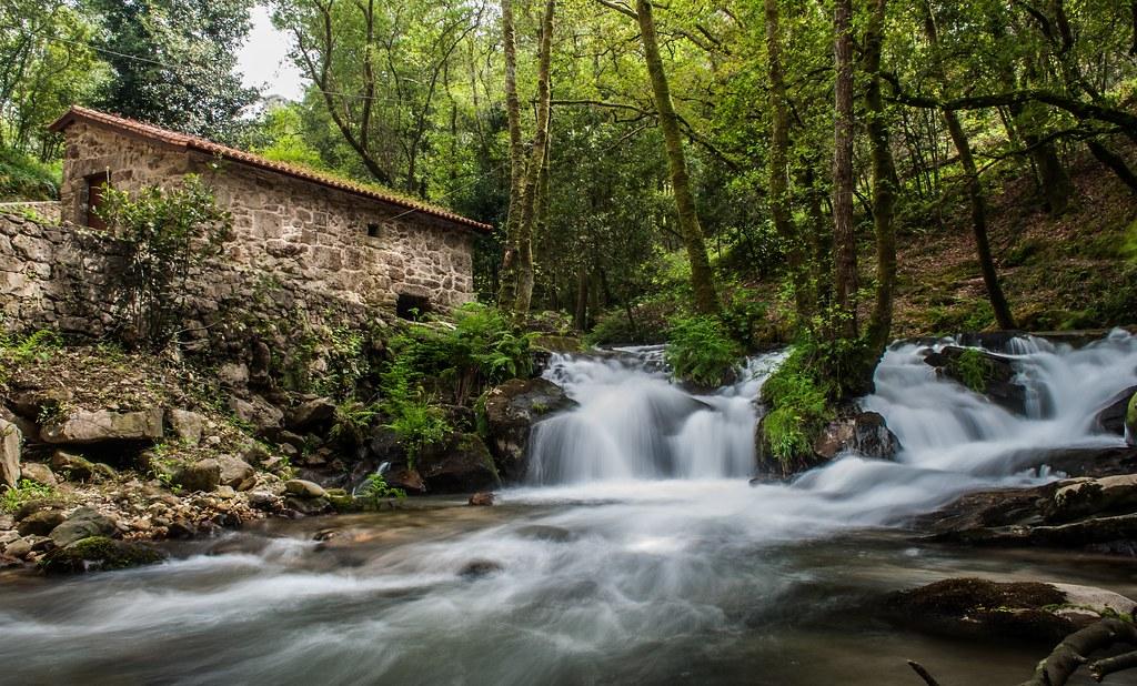 Cascada y bosque zona do Salnés
